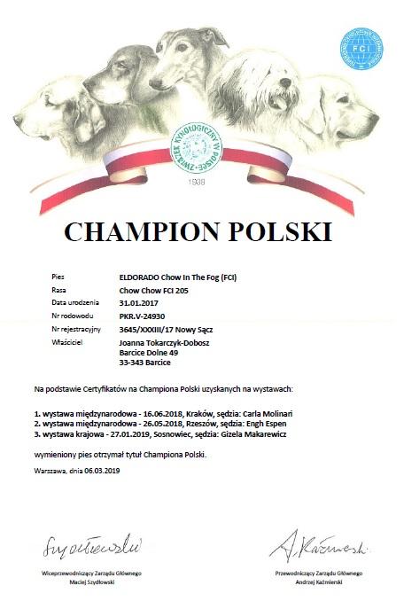 Chow Chow ELDORADO Champion Polski